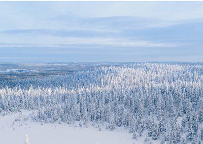 KHT, JHT, CIA, CGAP Jukka Malkki on nimitetty tarkastusliiketoiminnan ja Kuopion toimiston johtajaksi 22.1.2020 alkaen